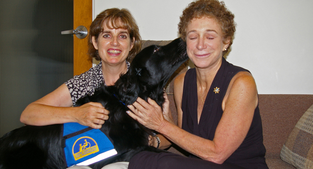 A trained therapy dog works with victims and witnesses in the Santa Barbara County